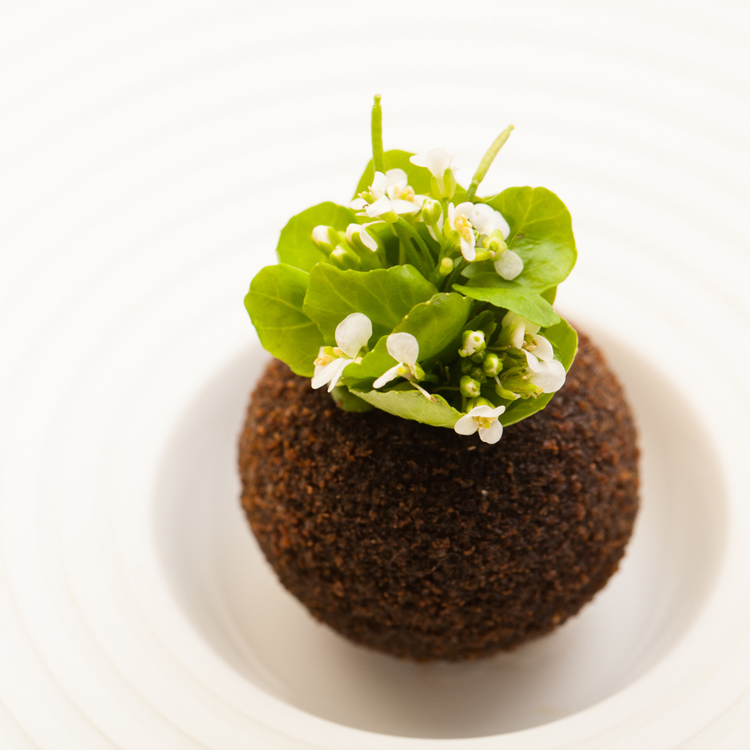Pumpernickel watercress