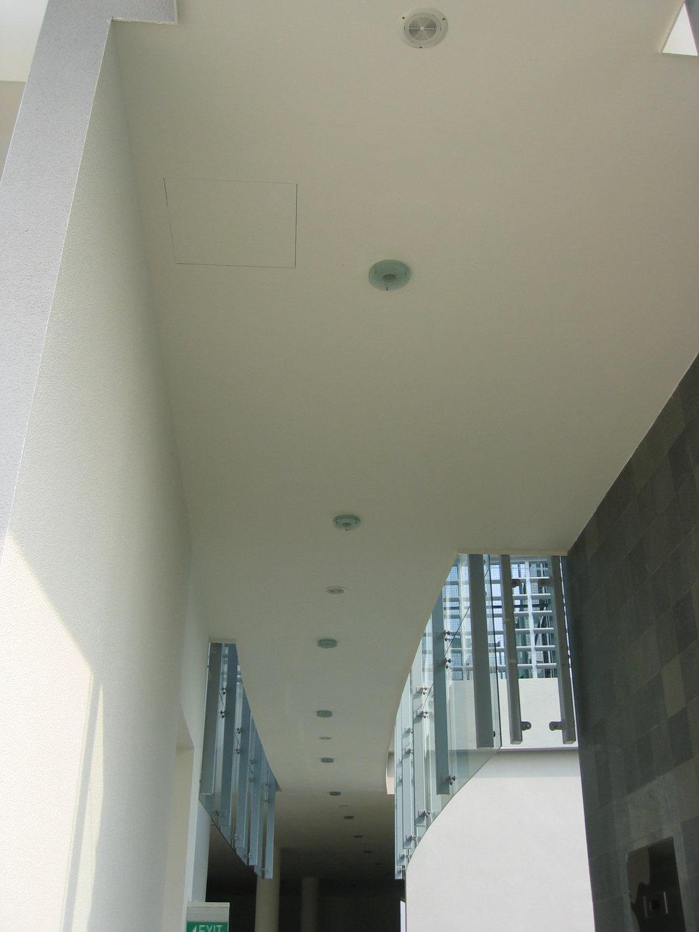 Flush ceiling.JPG