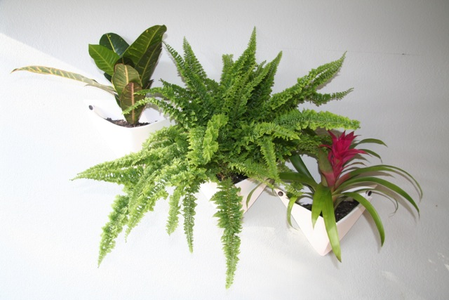 Plants on walls are easy with Verde Veil Origami Wall Planters
