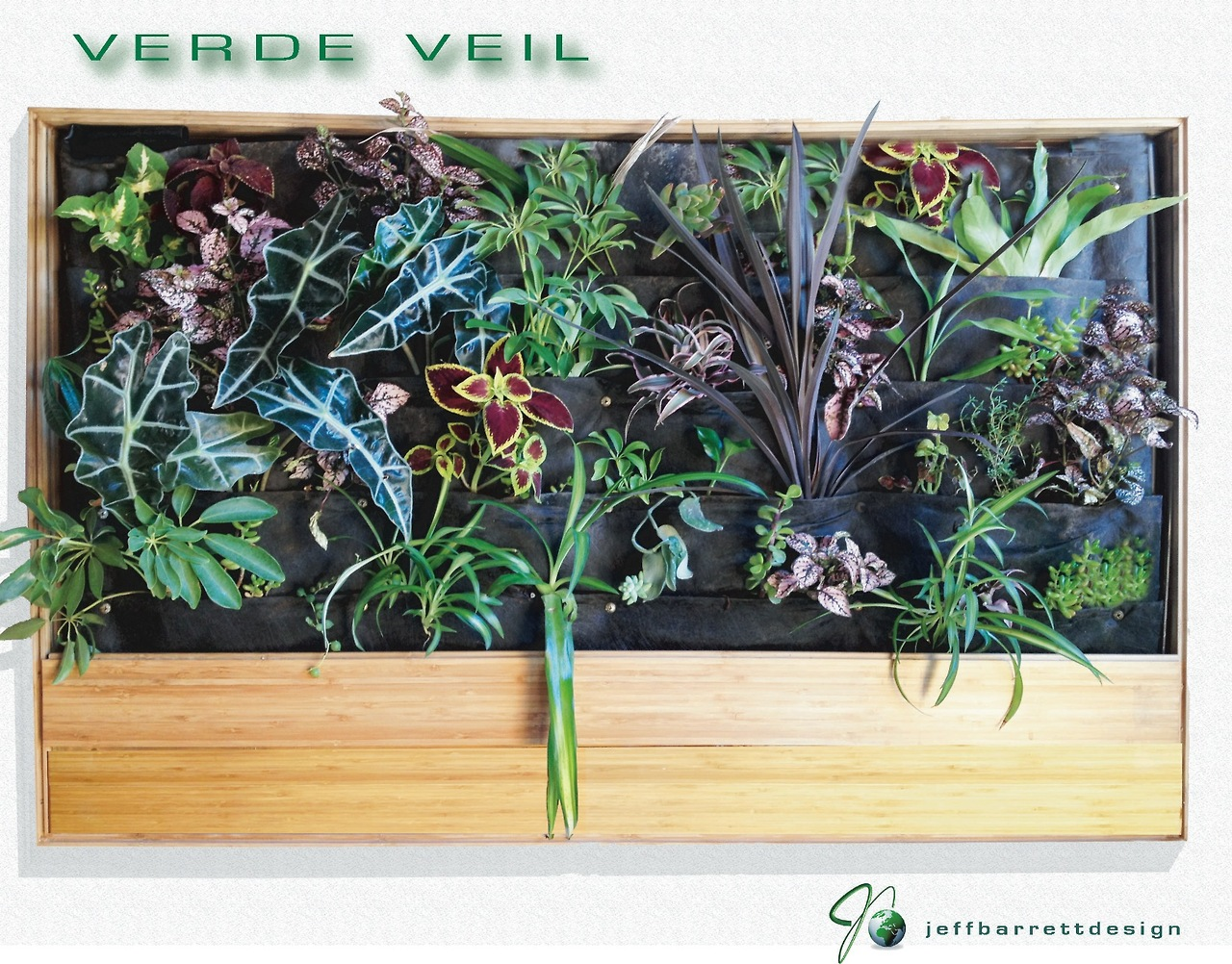 Hydroponic indoor green wall with bamboo frame by Verde Veil