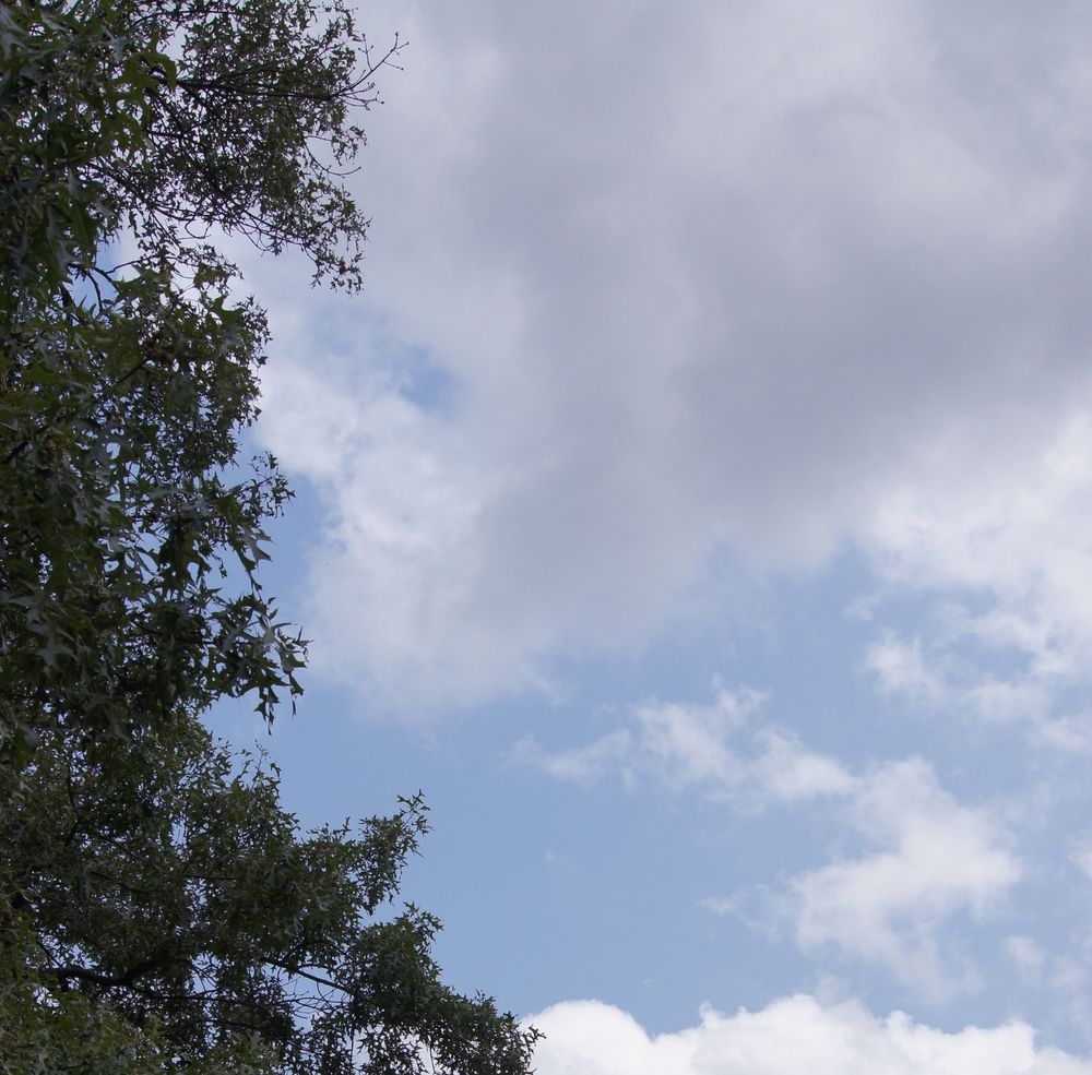 Sky July1 2015.jpg