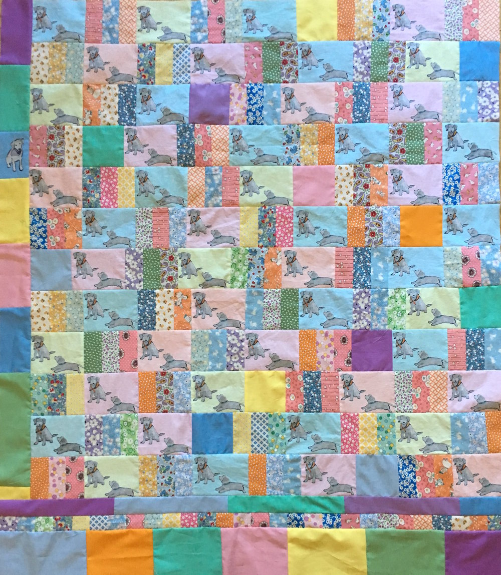 Completed Lab Puppies Quilt Top