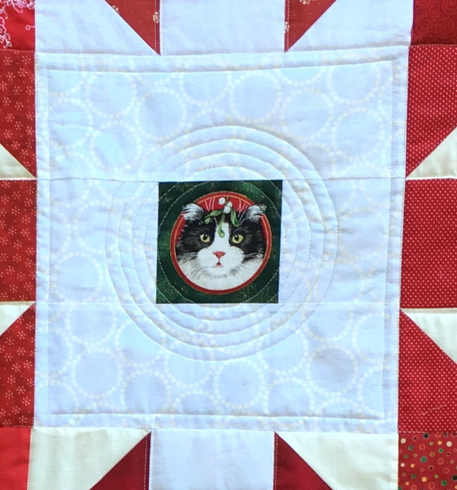 Circular quilting around the cat