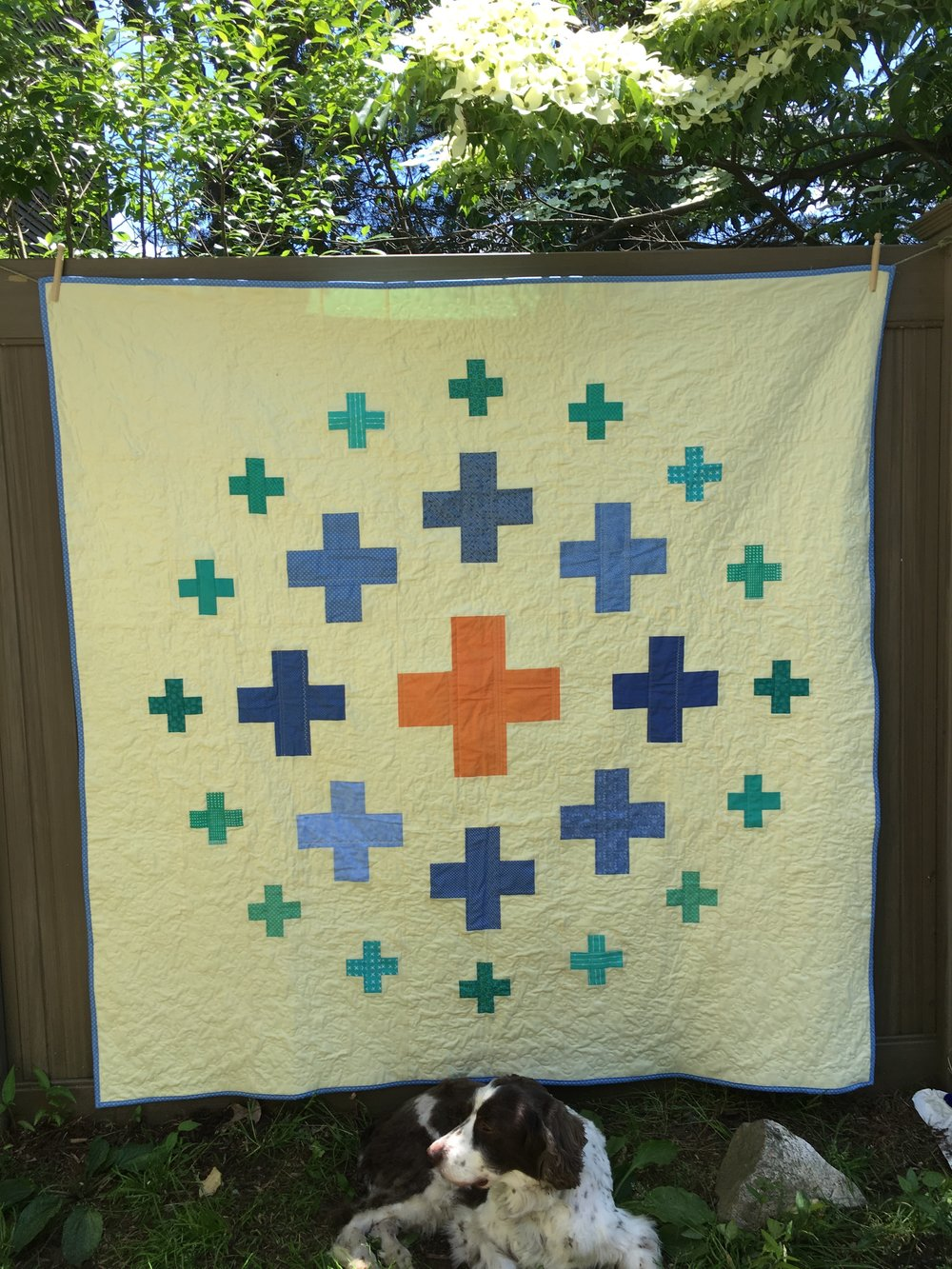 """Plus Surround"" Quilt 65 inches square, with my Springer Spaniel photo-bombing the shot!"