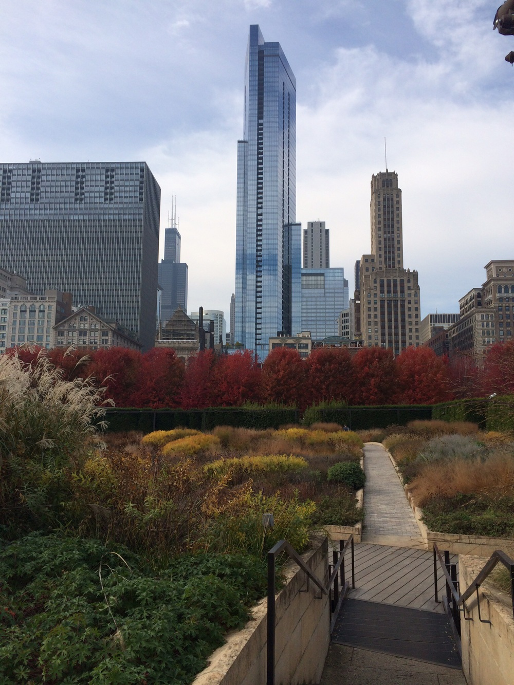 The skyline with the Lurie Garden at Millenium Park in the foreground.
