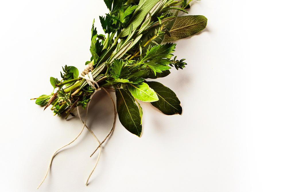 Herbs 1-2.jpg