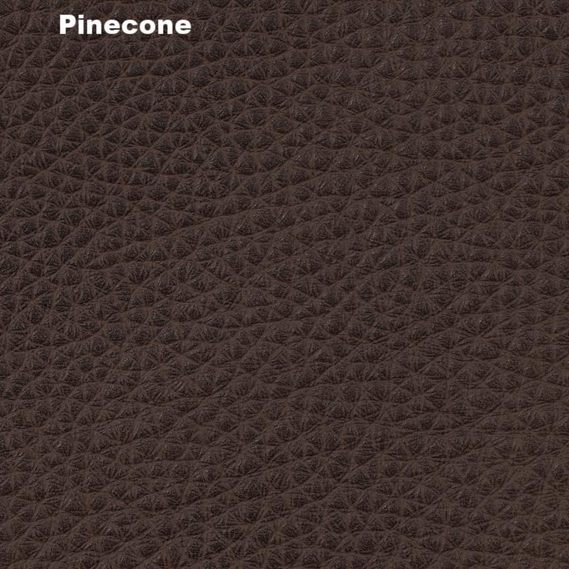 01_pinecone.jpg