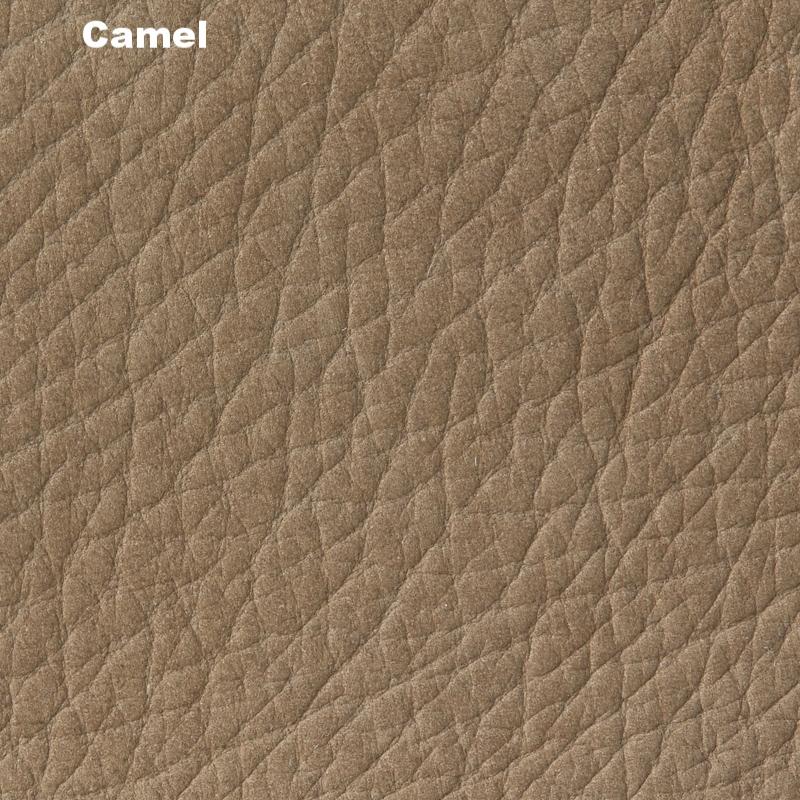 03_camel.jpg