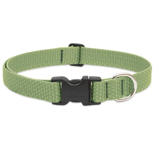 Lupine Eco Collar Green Square.jpg