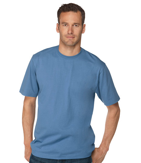 LL Bean - Carefree Unshrinkable Tee - Traditional Fit2.jpg