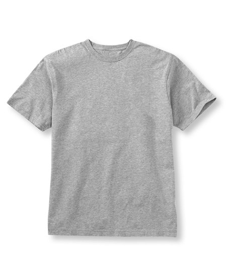 LL Bean - Carefree Unshrinkable Tee - Slightly Fitted.jpg
