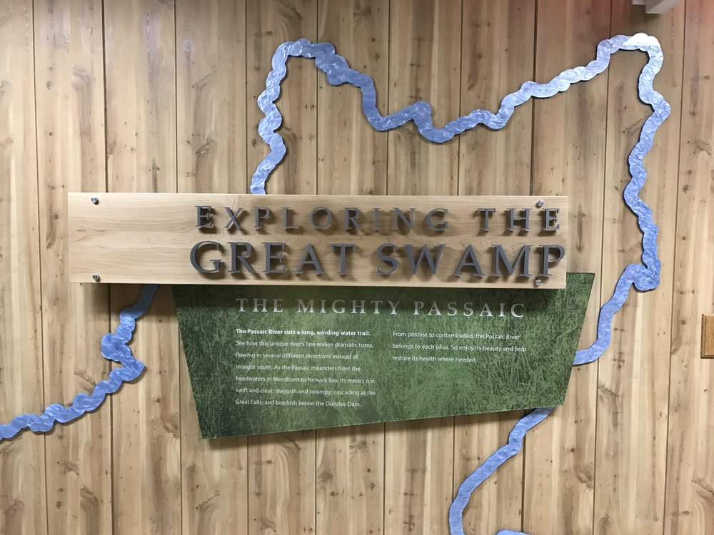 Exploring the Great Swamp exhibit introduction.