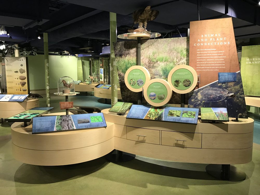 Biology exhibit island.