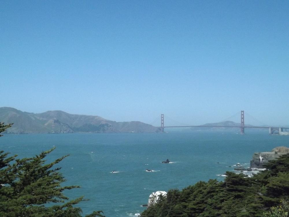 Golden Gate Bridge in all her glory