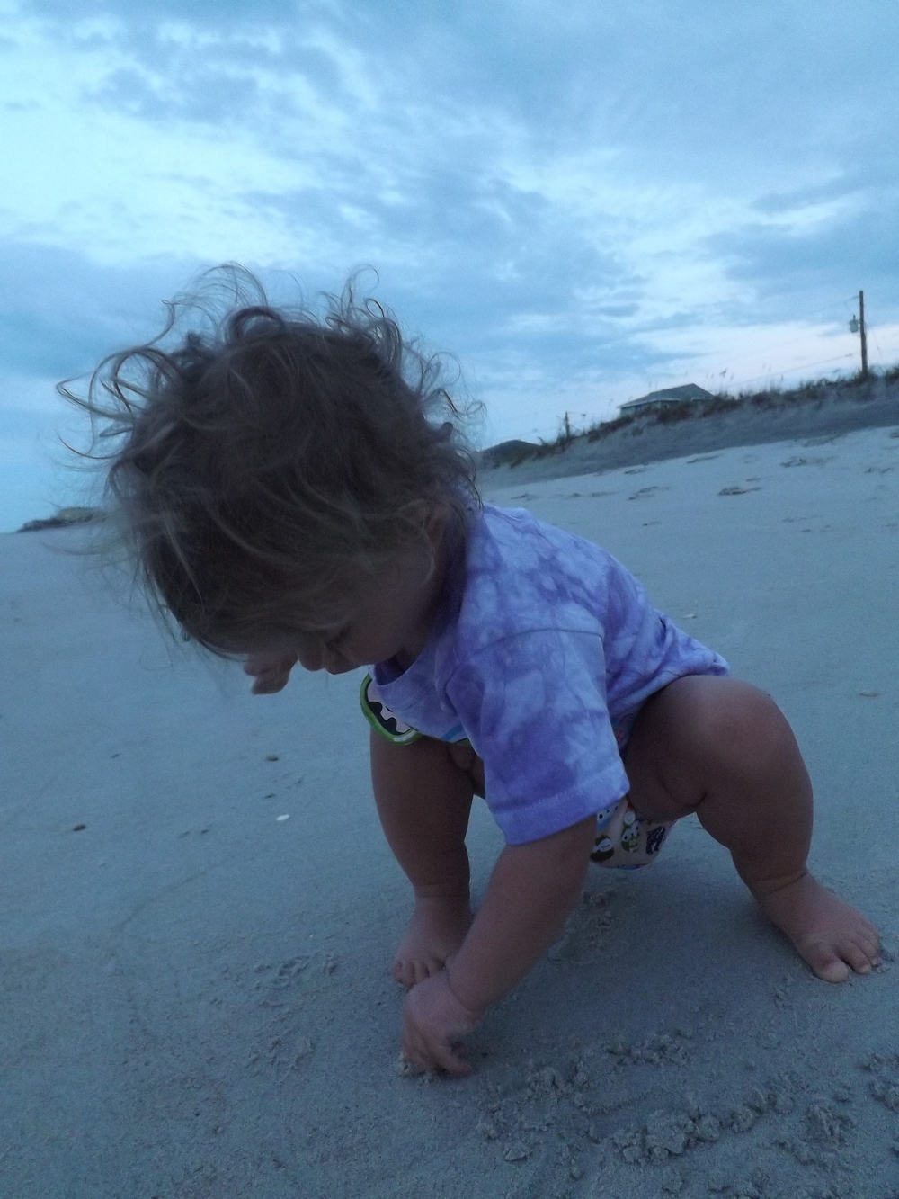 My wild-haired shell collector