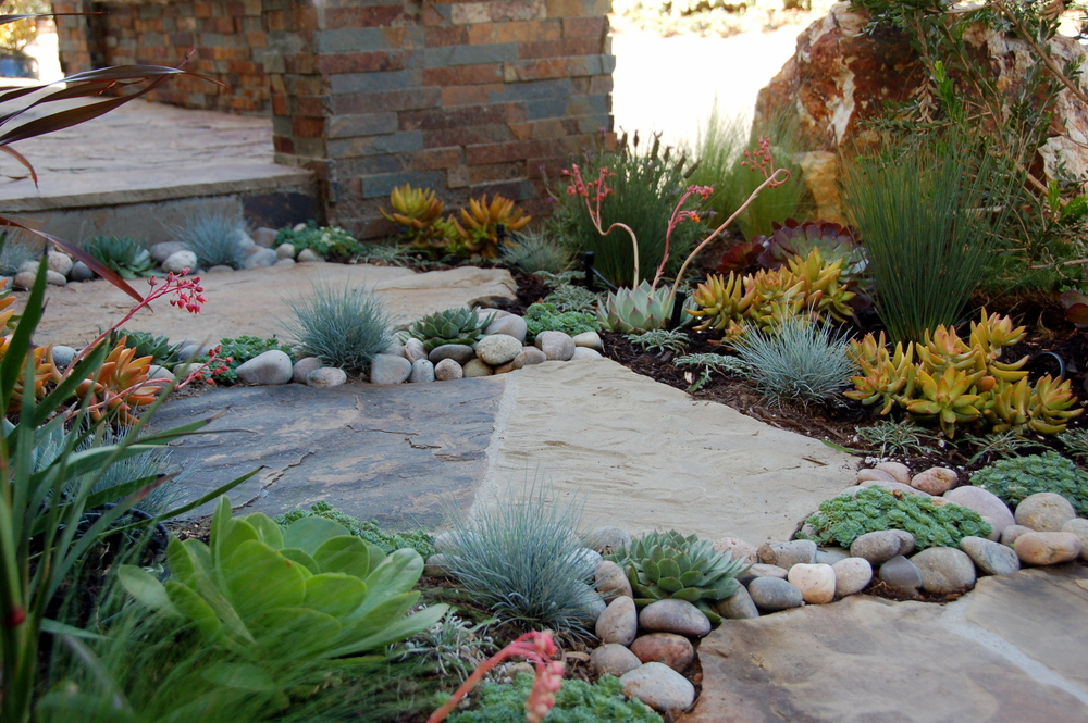 Colorful Succulent Garden Living Gardens Landscape Design
