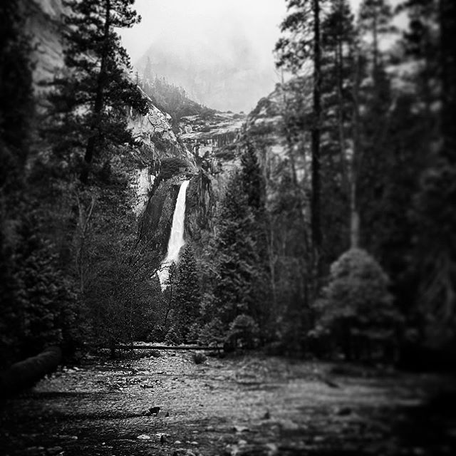 Lower Yosemite Falls #yosemite #photography