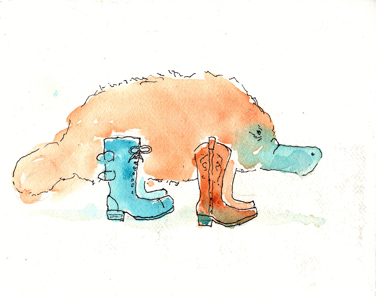 8/31/13 -  Platypus In Boots .   Today's is especially stupid, even for me. And I wanted to do something in two colors. Then I cheated and added black sharpie because it's America and I can do things like that.   Buy it here -  http://taylorwinder.bigcartel.com    Prints here -  http://society6.com/taylorwinder