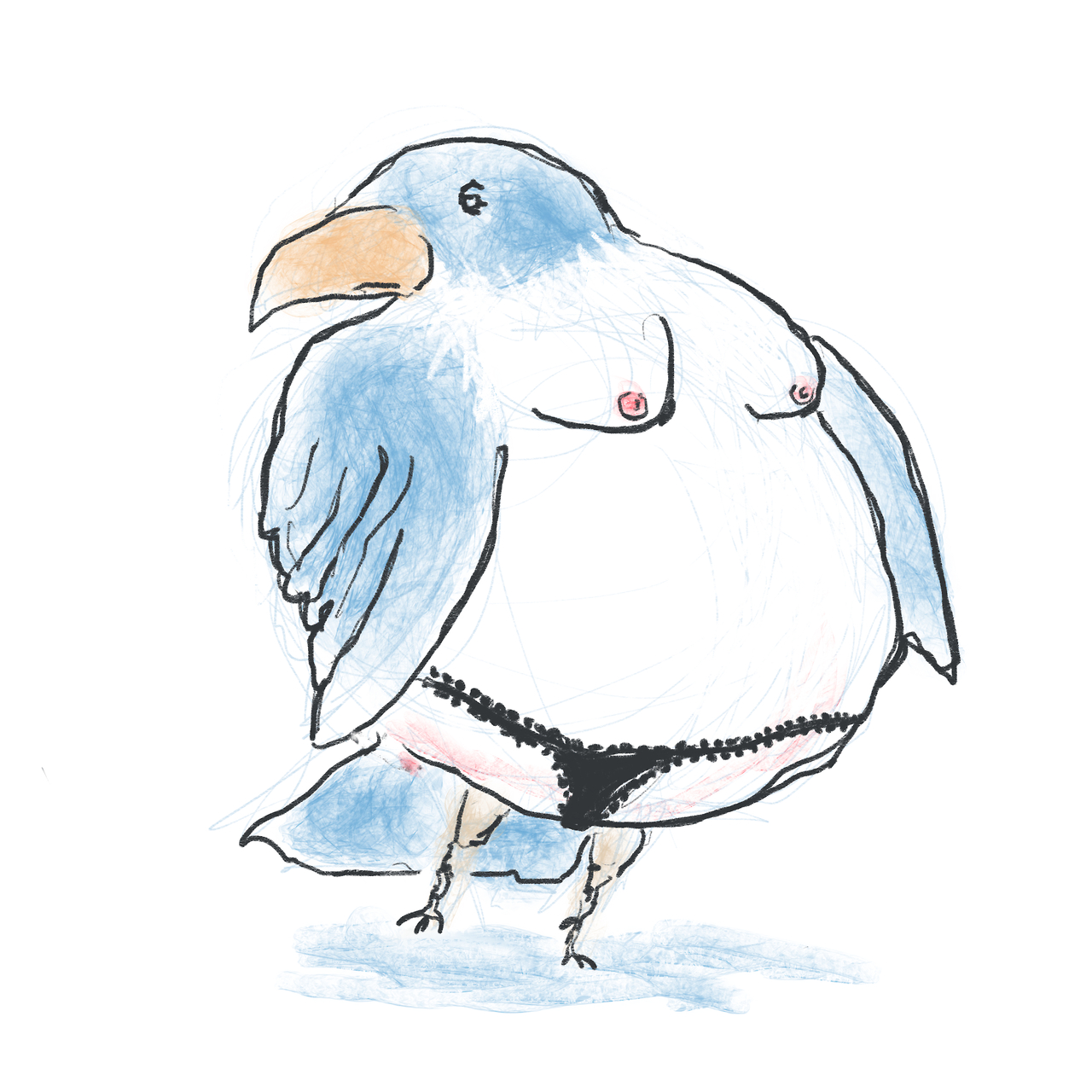 Throaty Thongbird.     Rejected book cover idea.