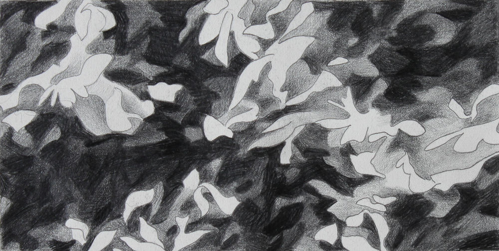 untitled 11, 2001, graphite on  paper, 4.5 x 8.75""