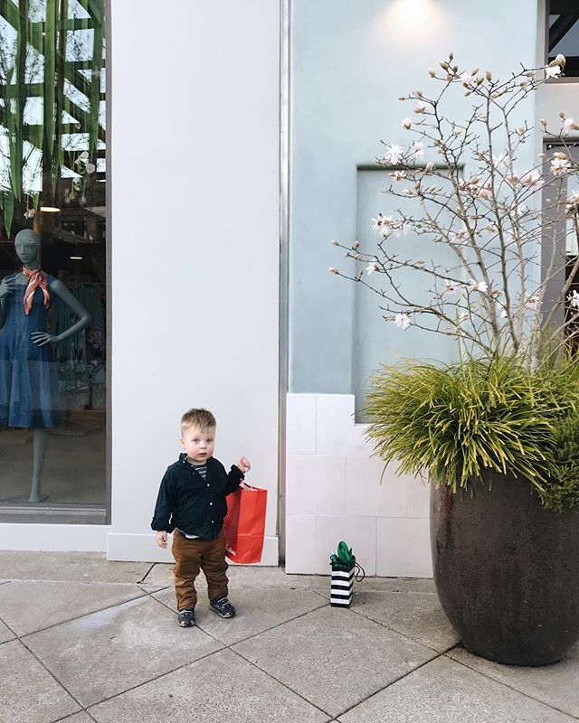 My little shopping buddy. 💛 This kid is getting more and more fun as he approaches his second birthday! If this much fun accompanies the sass of terrible twos, I am not phased at all.