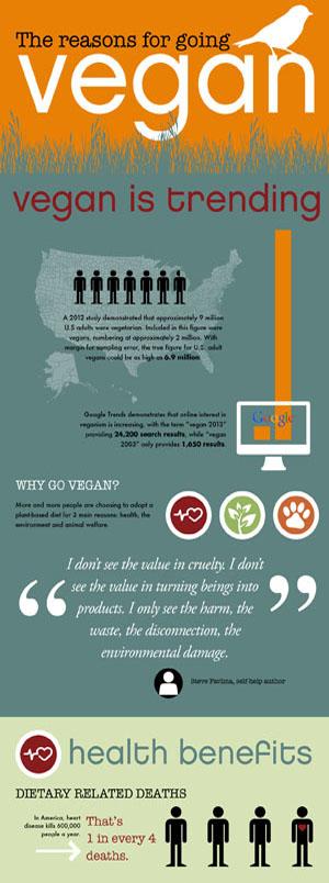 The Reasons For Going Vegan