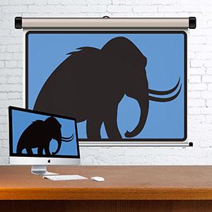 mammoth-presentation.jpg