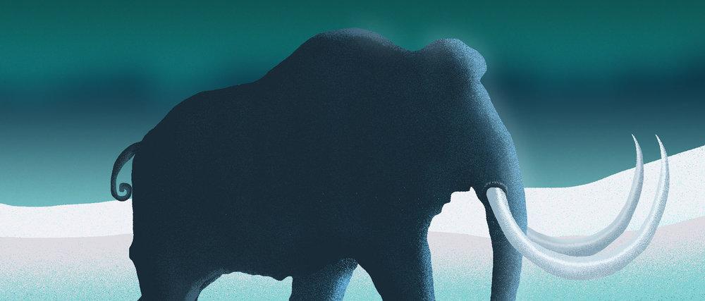 mammoth-banner.jpg