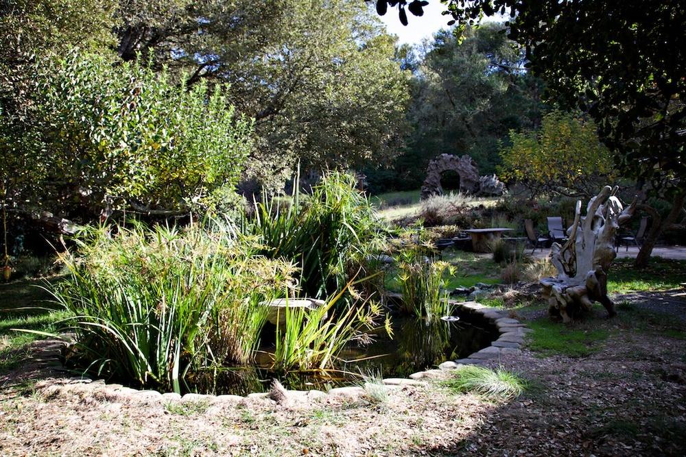 ext garden 2.jpg