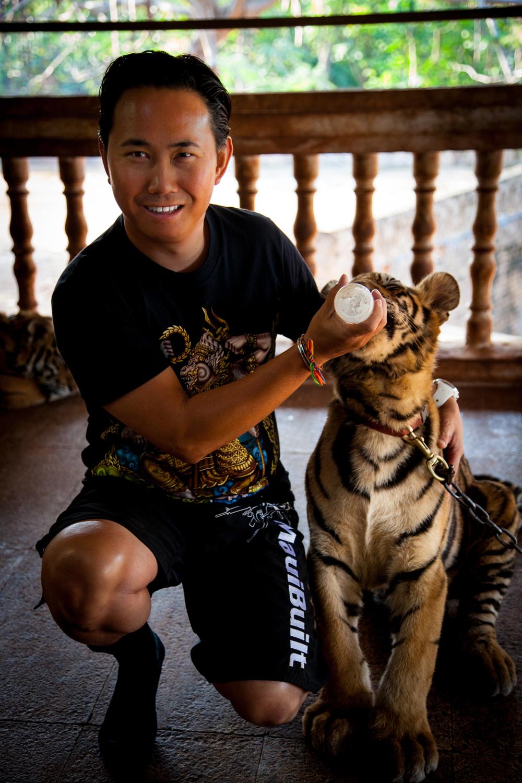 tiger temple bobby-1.jpg