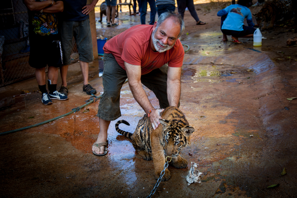 tiger temple coyote wash-1.jpg