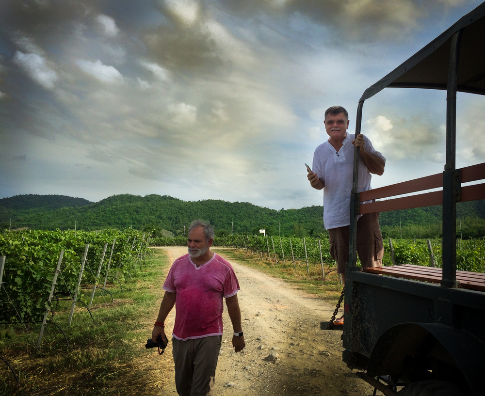 papa & peter vineyard-1.jpg