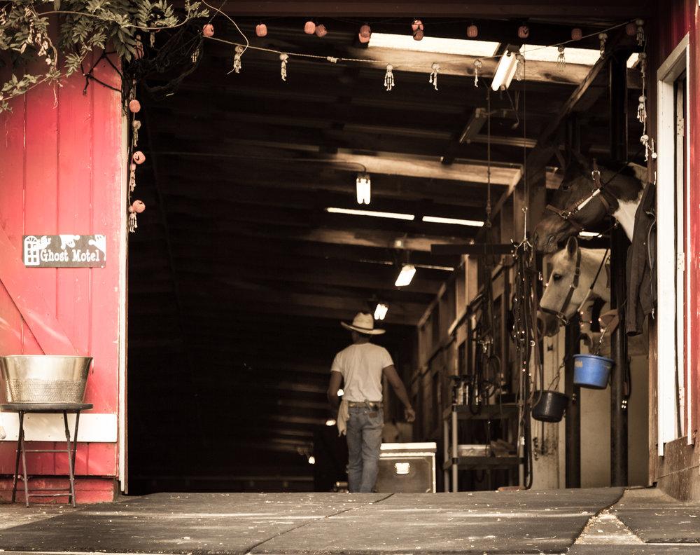 Barn Door-1.jpg