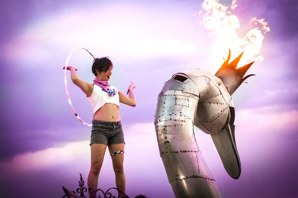 burning swan2-1.jpg