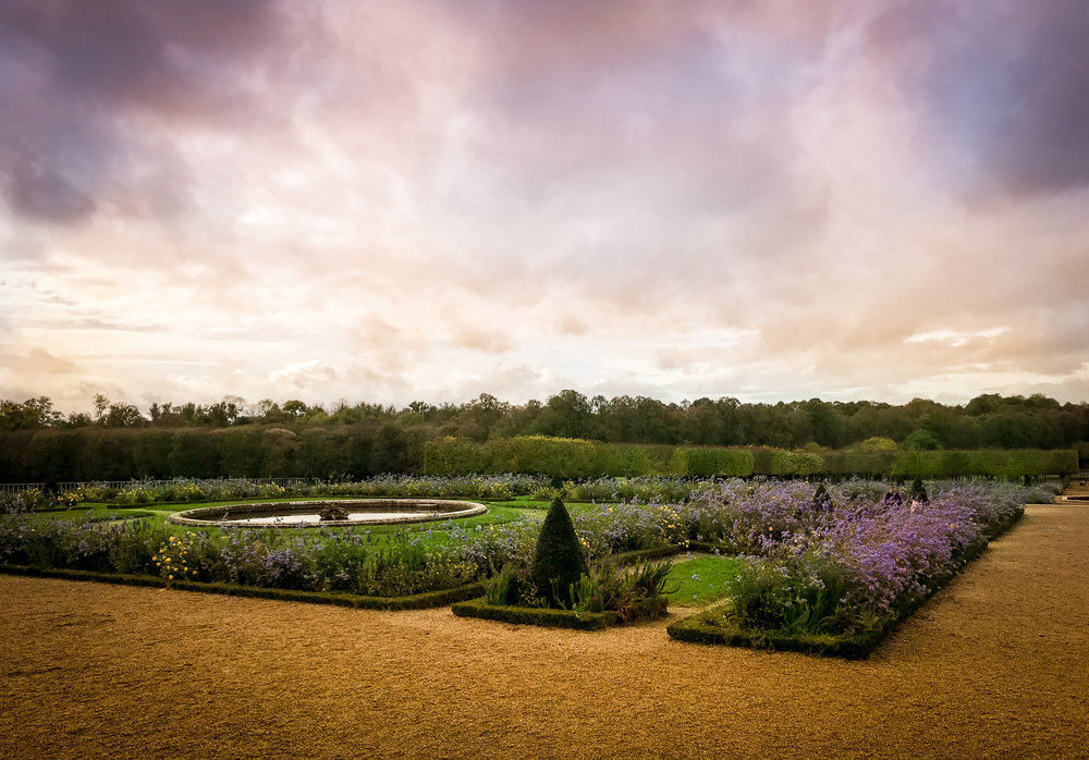 lavender @Versailles LR-1.jpg