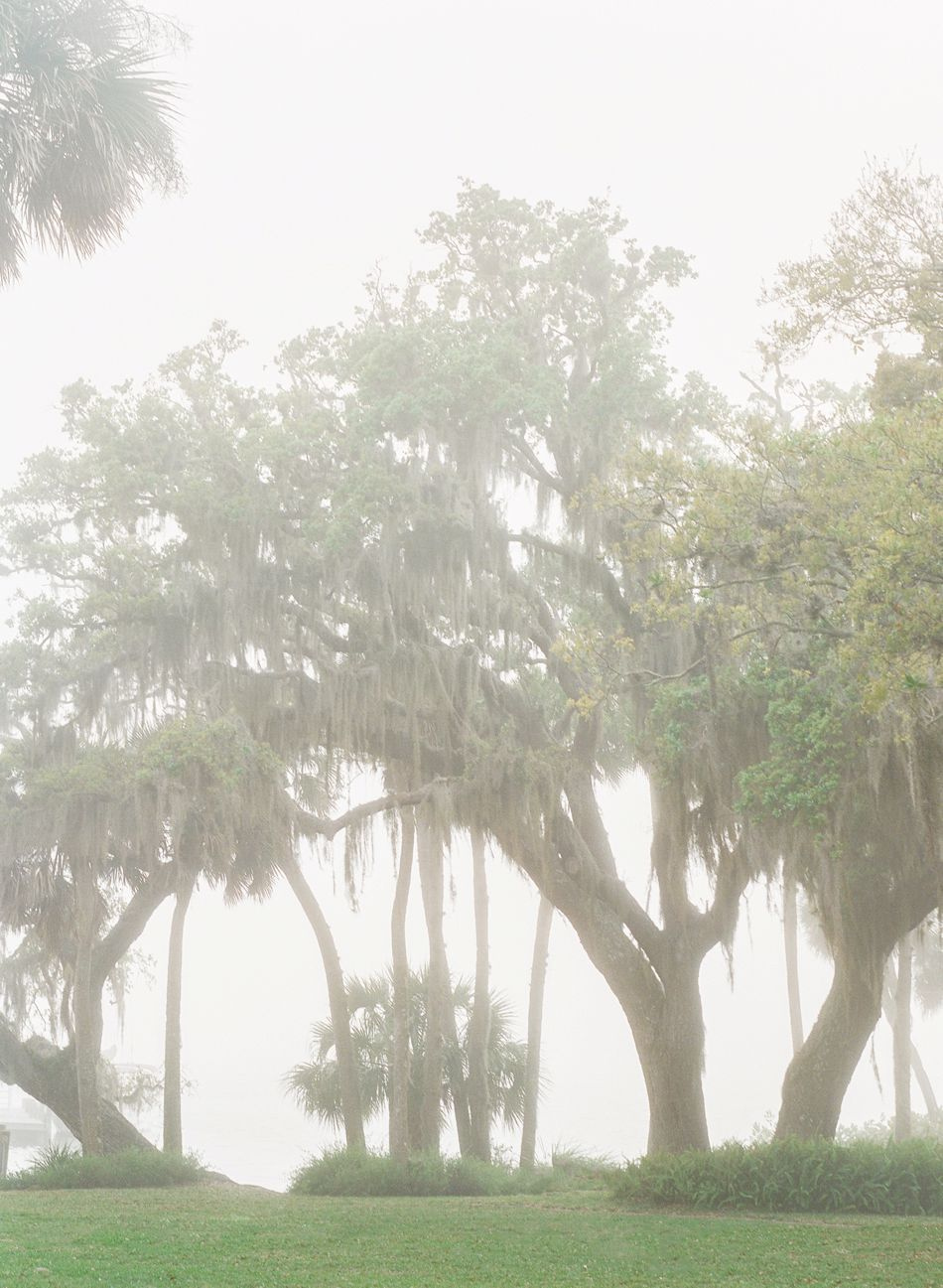 Historic-Estate-Wedding-Bay-Preserve-Fog-Spanish-Moss_0795.jpg