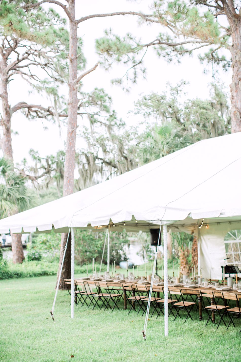 Organic Backyard Vow Renewal | Englewood, Florida | Elleson Events