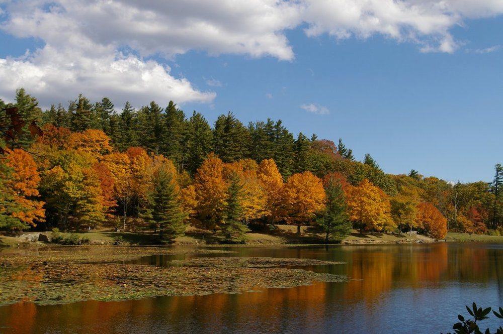 Betsy Wood shares a photo of a hike around Bass Lake in the fall.