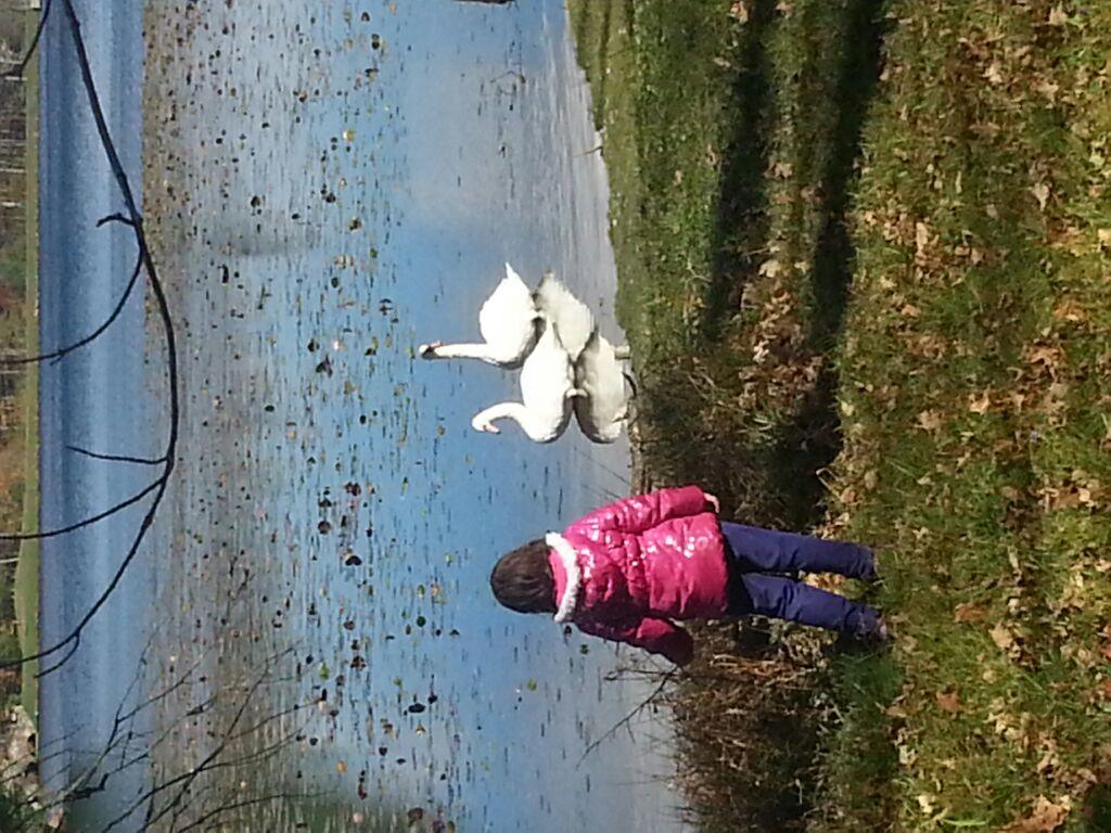 Sarah Symer enjoys her time at Bass Lake.
