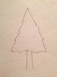 """The """"spear"""" - or what we think a pine tree looks like"""