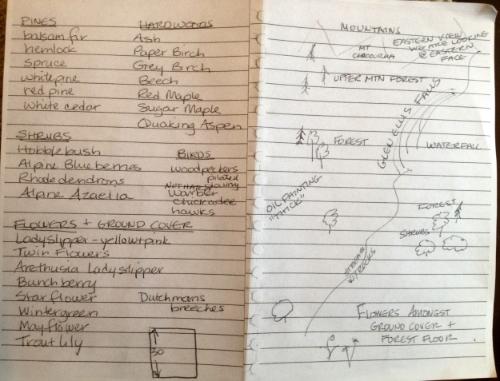 Linda's notes