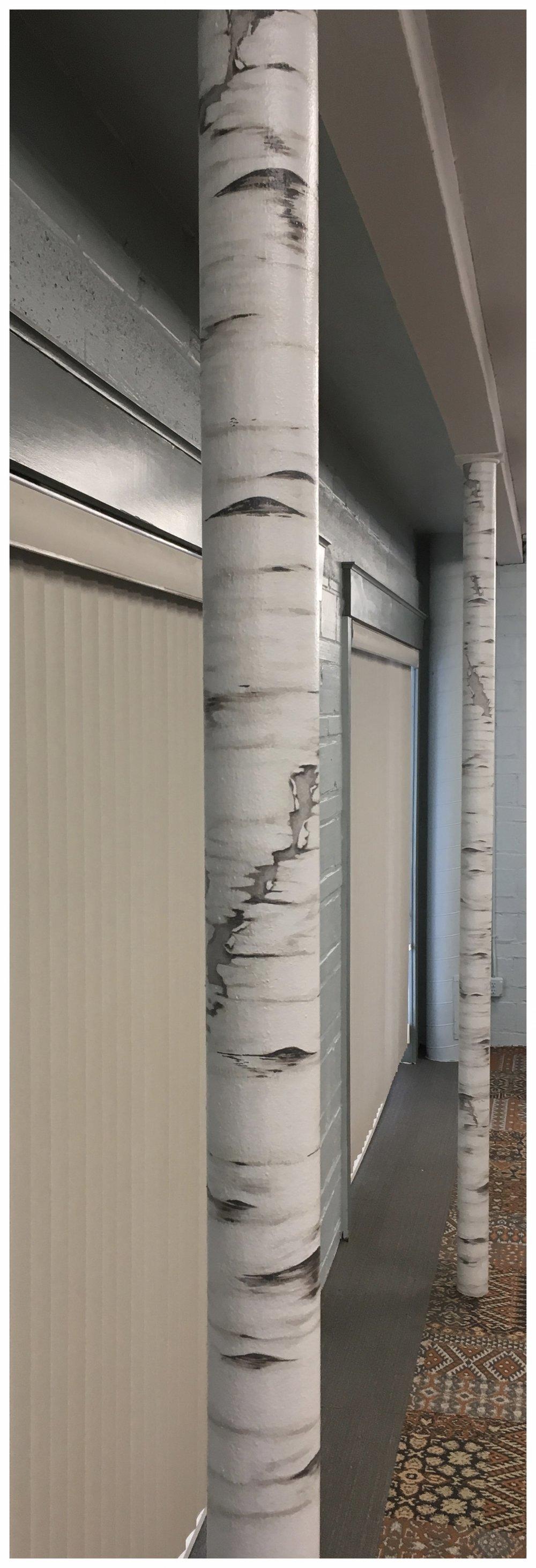 Birch Tree Column Murals