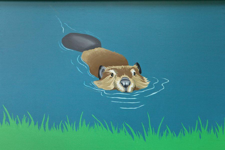 Beaver 2.jpg