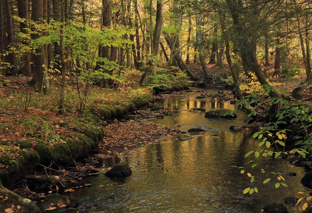 Tankerhoosen River, Vernon, CT