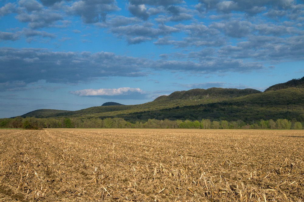 After the Harvest, Hadley and the Holyoke Range, MA