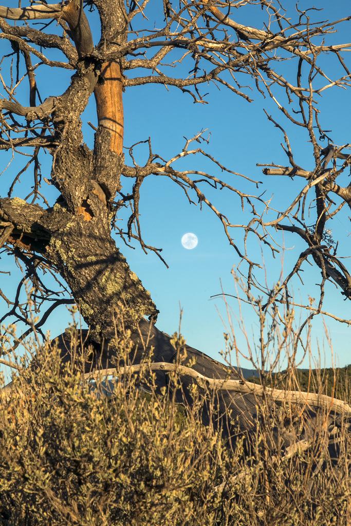 Moonrise, Taos, NM