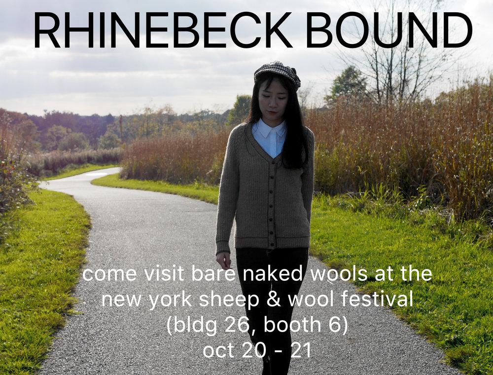 rhinebeck bound store2.jpg