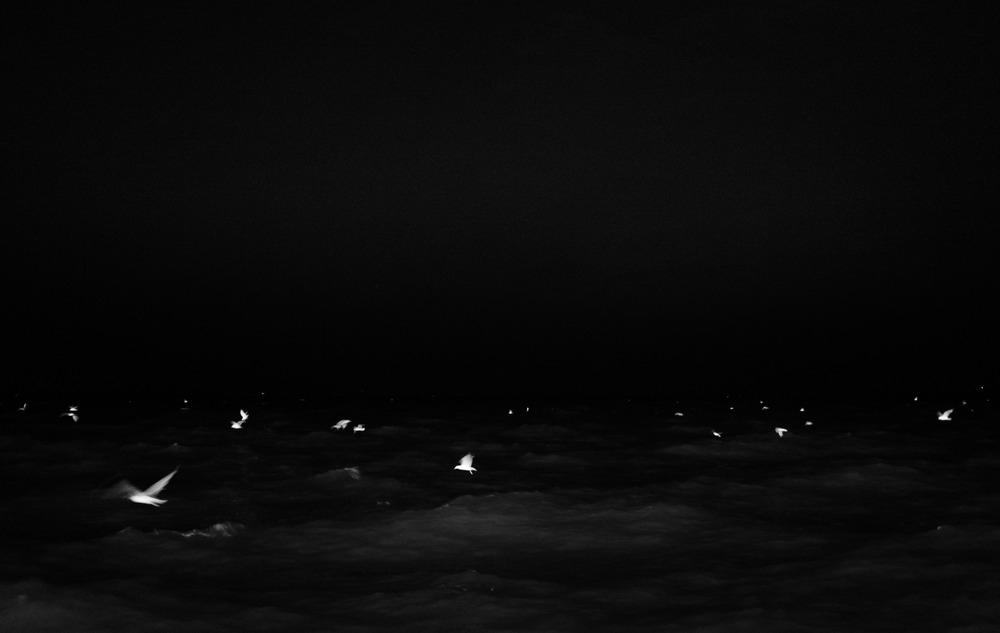 untitled-33.jpg