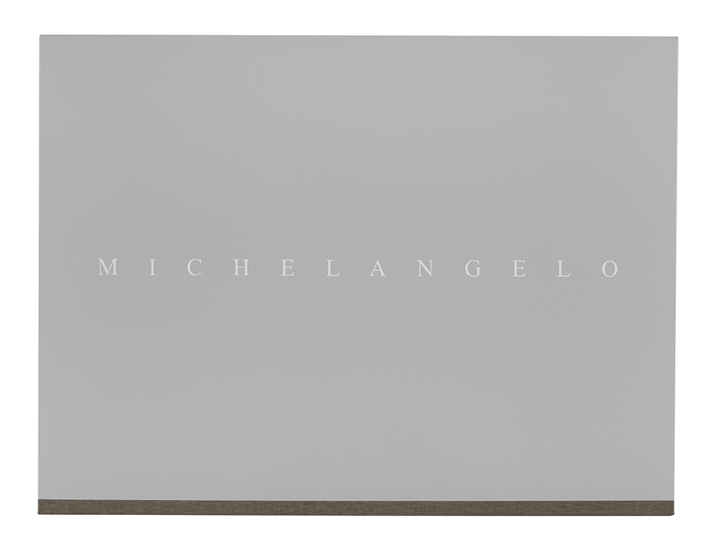 PJ HICKMAN Michelangelo 2014 Acrylic on reverse of black primed canvas 61 x 81.3cm.jpg