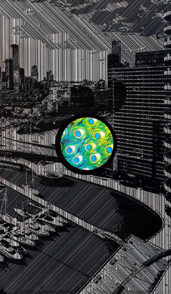 City Views (Docklands).jpg